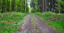 Der Weg vor uns