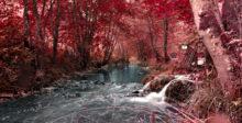 Aus Spätsommer mach Herbst