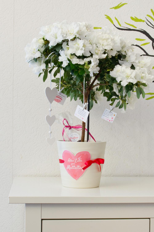 Wunschbaum für den Muttertag